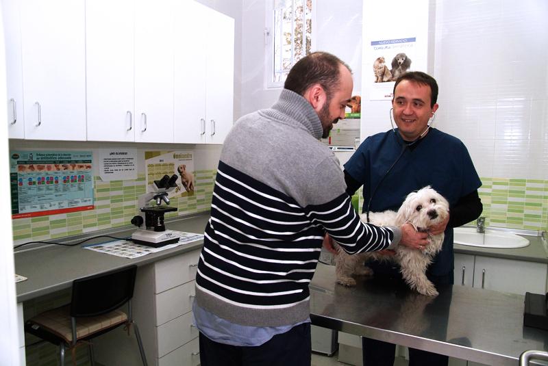 Analisis Clinicos Veterinarios en Aluche
